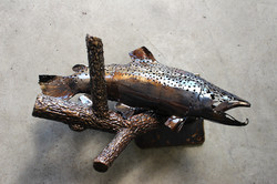 Brown Trout and Detailed Branch