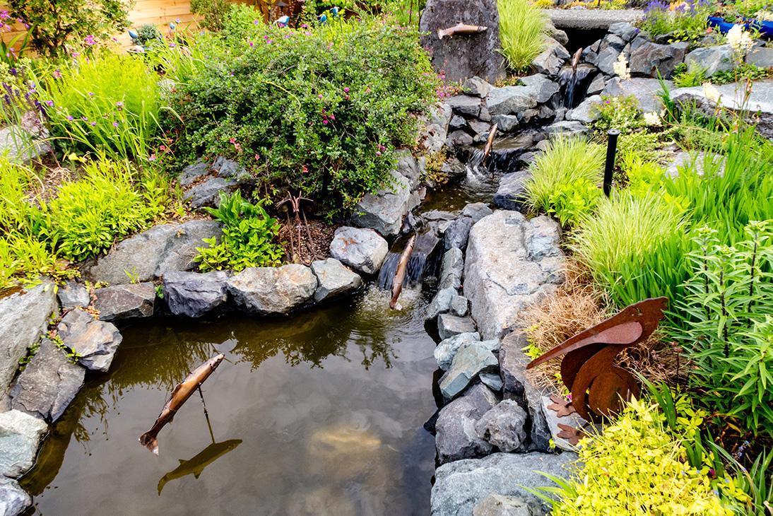 Classic Fish In Waterfall