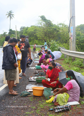 Fisherwomen sell their fishes next to Mithmumbari bridge area in the evening