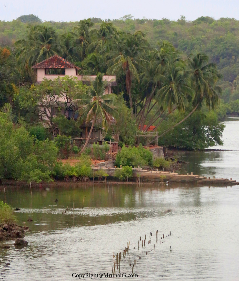House on the bank of Vadatar creek waters with amazig views of Vadatar creek.
