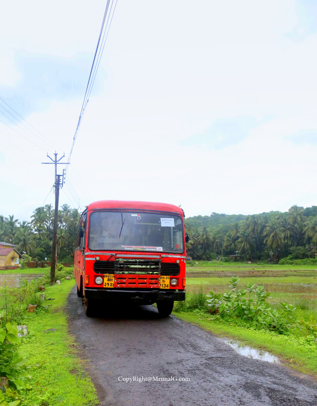 Red State Transport bus (ST bus) on rural roads.