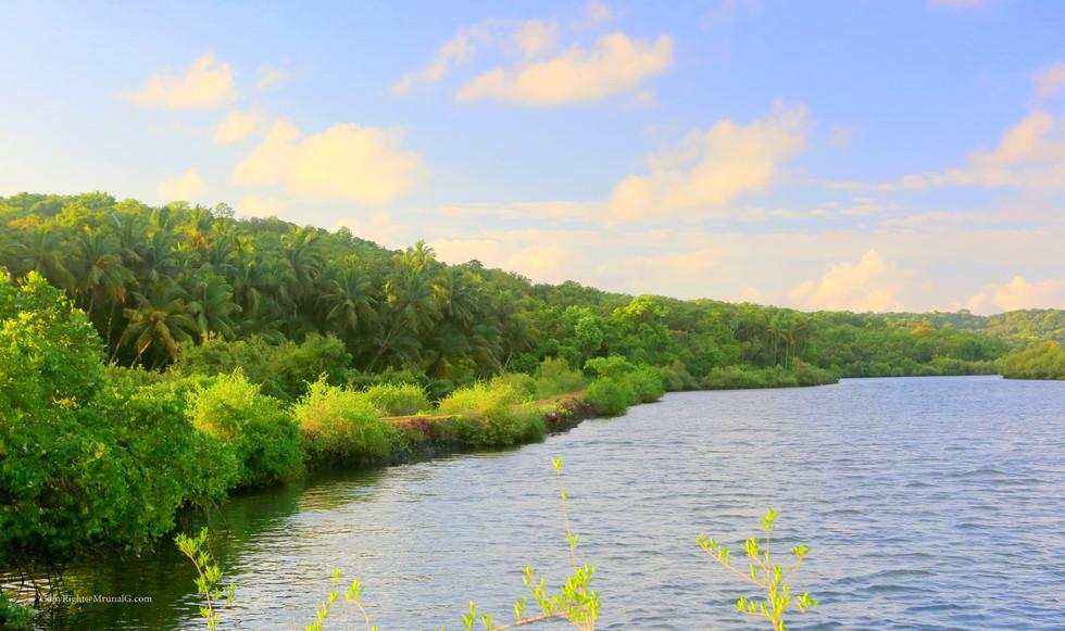 7.27 Belwadi creek waters