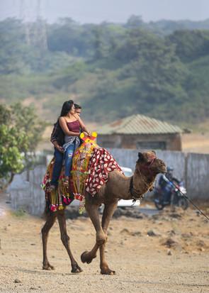 Camel ride at Tiger point Lonavla