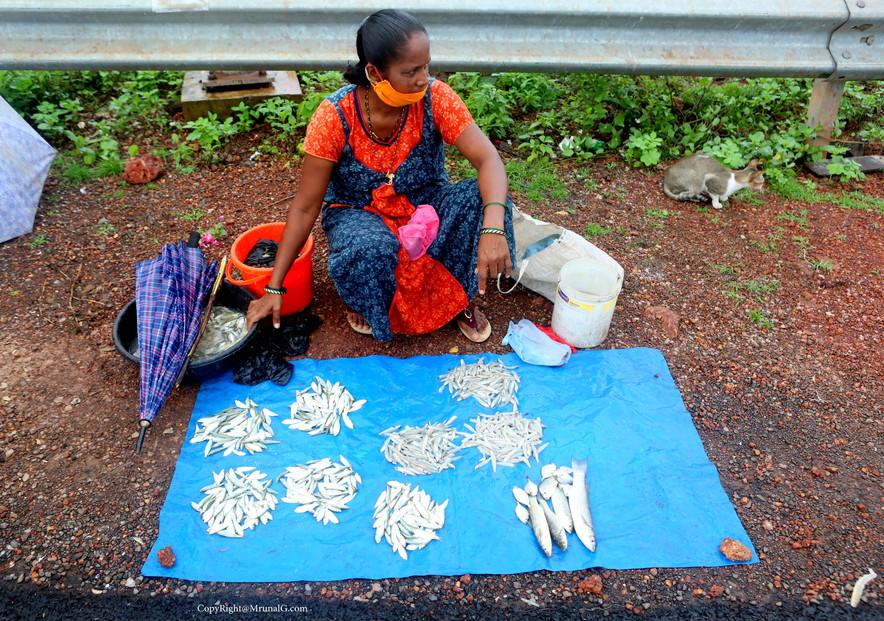 A fisherwoman sells fish near Mithmumbari bridge area.