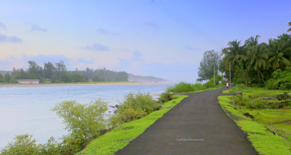 The serene peace on the road to Taramumbari beach