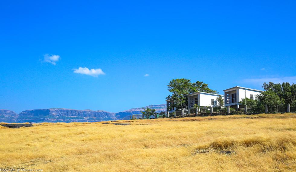 The MTDC resorts