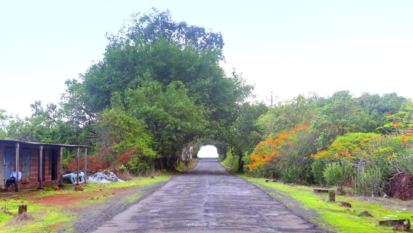 Devgad Nipani main highway next to Dabhol intersection after Devgad Katta.