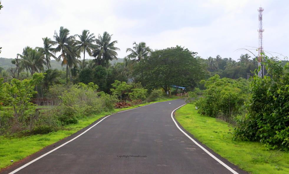 Road from Mithbav bridge to Mithbav.