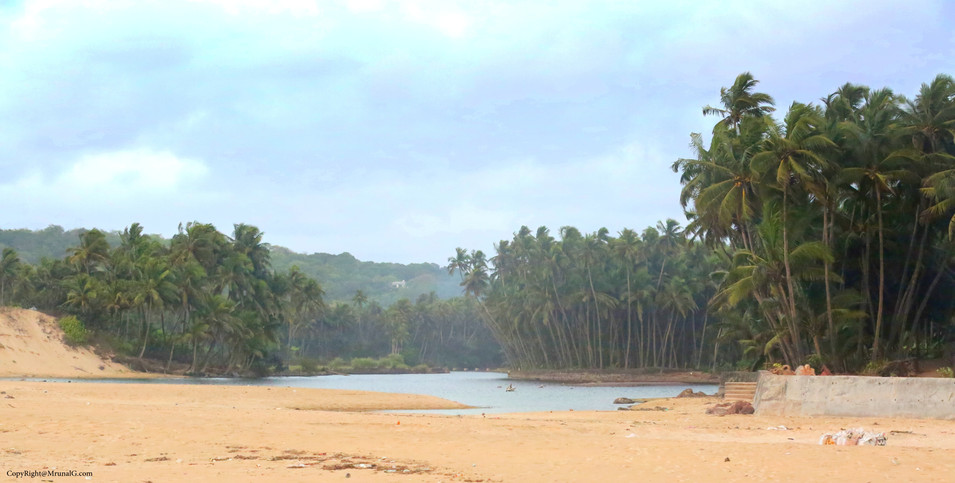 The coconut plantations at the extreme end of Kunkeshwar beach