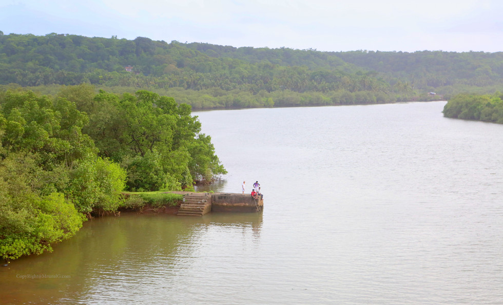 7.45 Mithbav creek waters