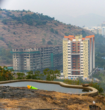 Citizen initiative created ponds at the Baner hill for green plantations