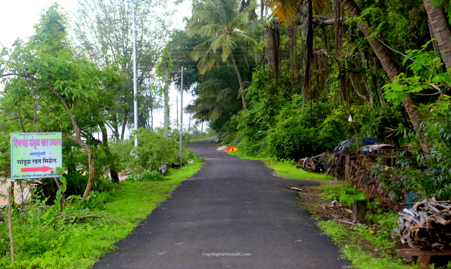 Taramumbari beach road
