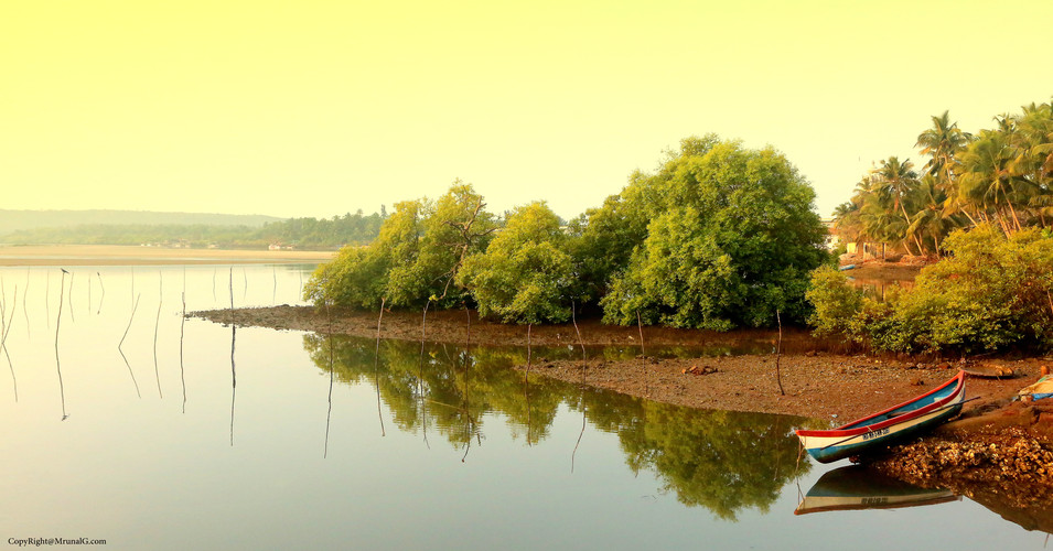 The low tide creek waters next to Taramumbri