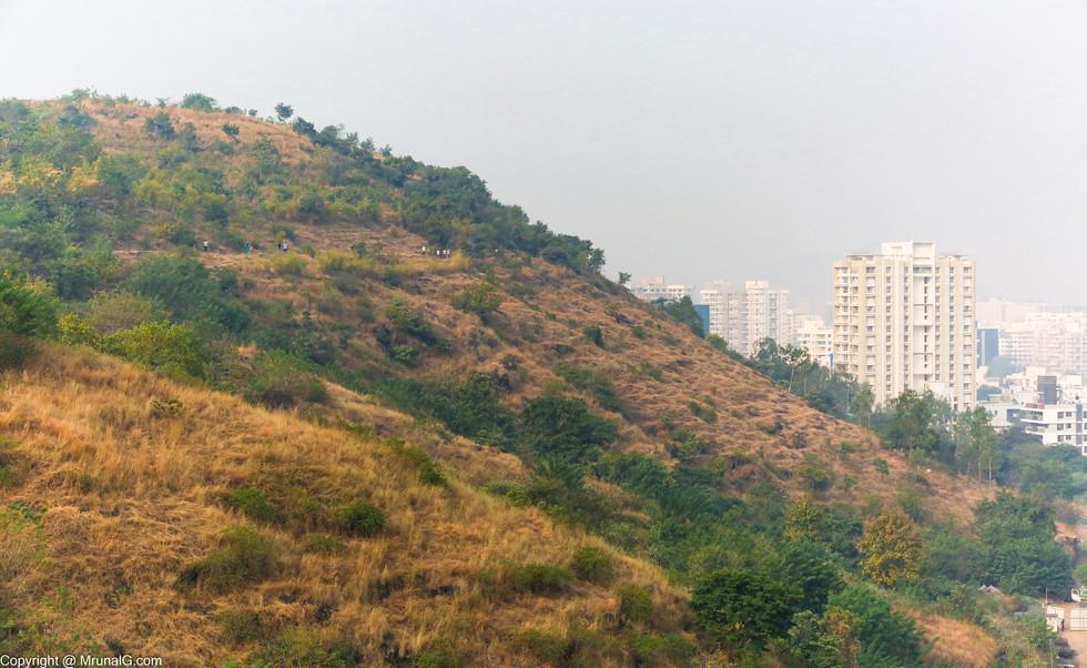 Pashan hills