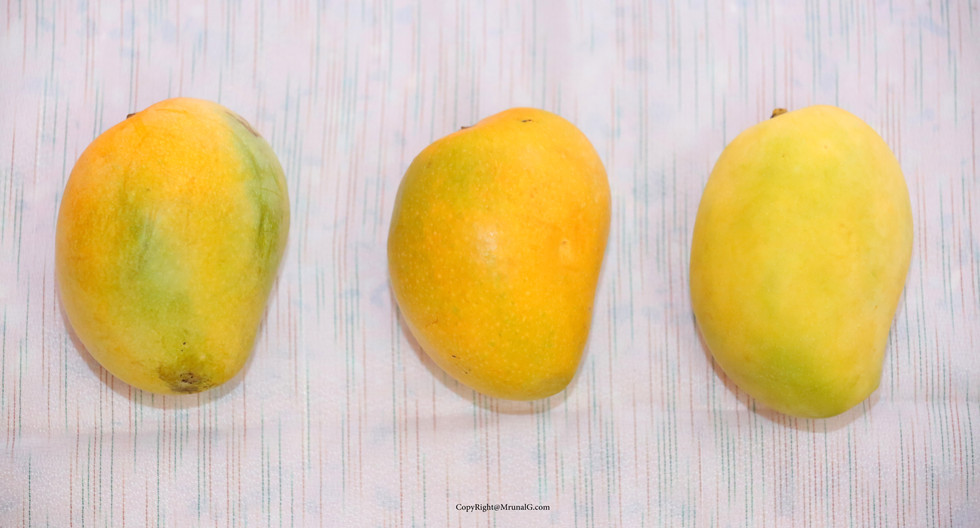 Ripe mangos from left to right Ratna, Alphonso (hapus), Keshar
