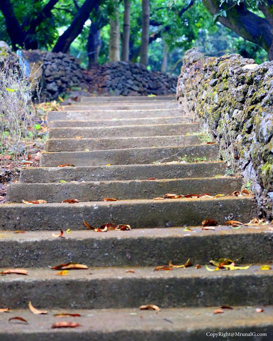 Stair road in Pankhol farmhouse Devgad next to Devgad college area.