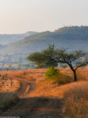 Road through Saswad hills