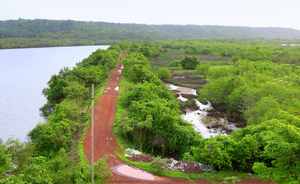 Road on the water barrier next to Mithbav bridge.