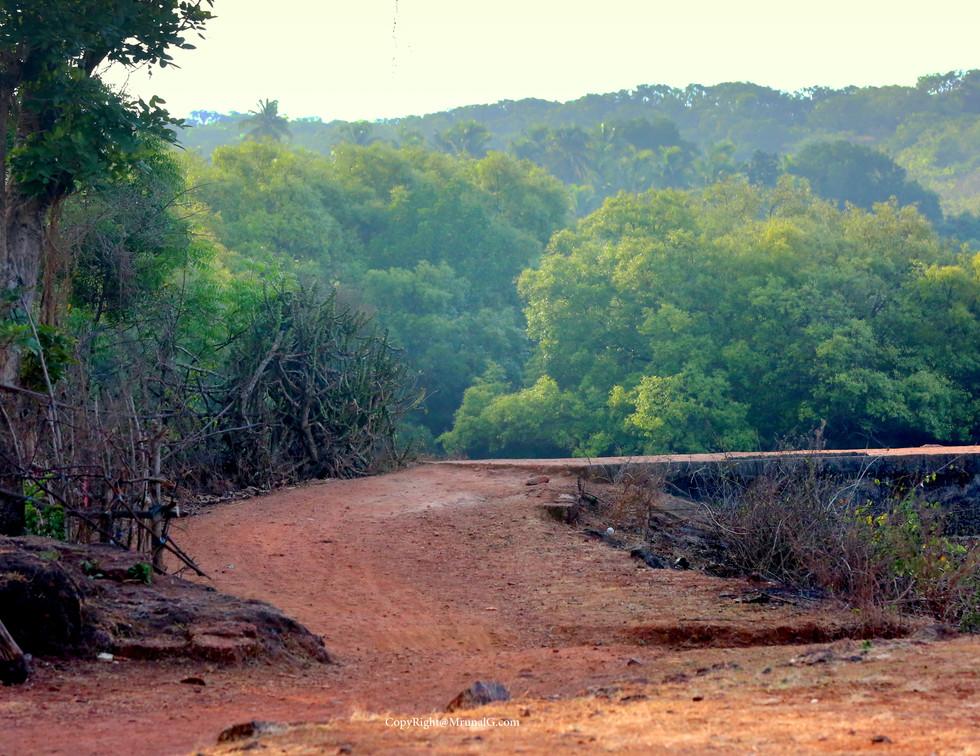 Taramumbari village road going to Bhatvadi next to Vitthal Rakhumai temple.
