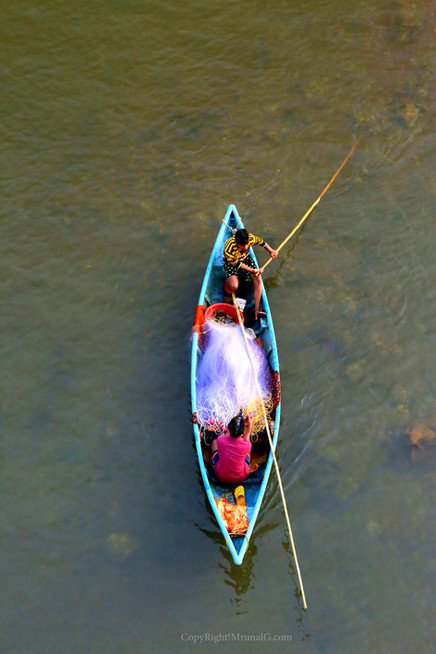 Fishermen collecting nets from waters in a creek water