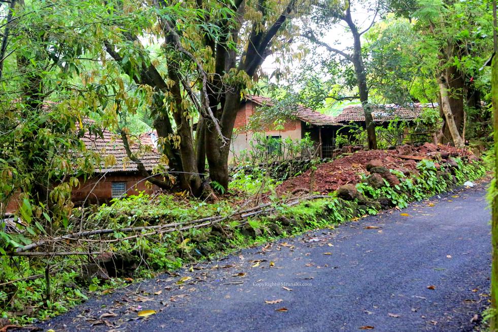 Road in Vadatar from Katta