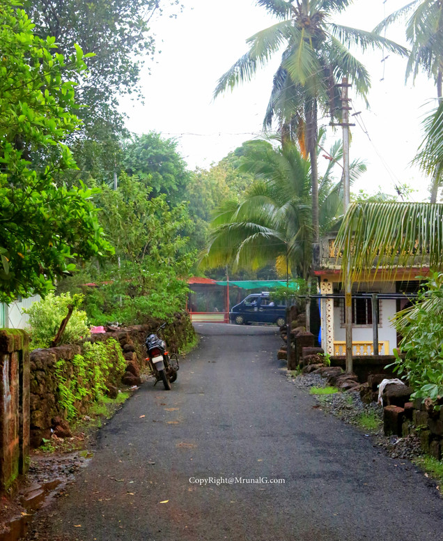 Road from Devgad Katta entering the Vadatar area towards the end of the road near Vadatar houses.