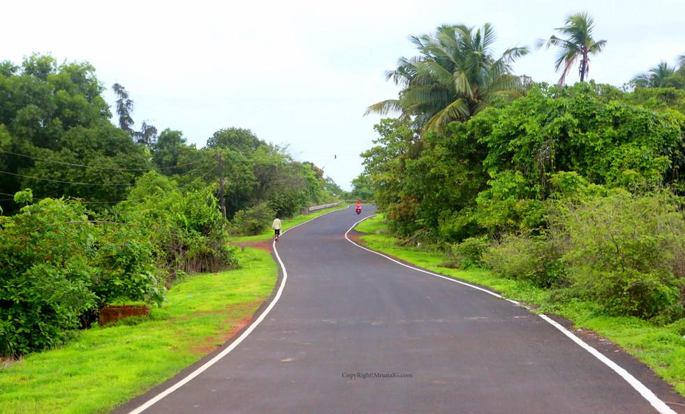 Road from Mithbav to Mithbav bridge