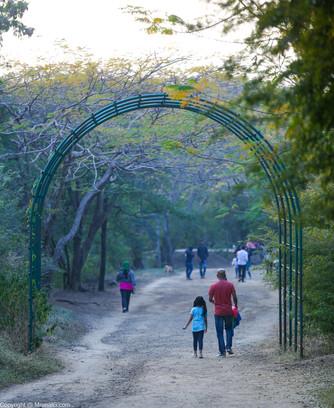 Taljai tekdi walking trails