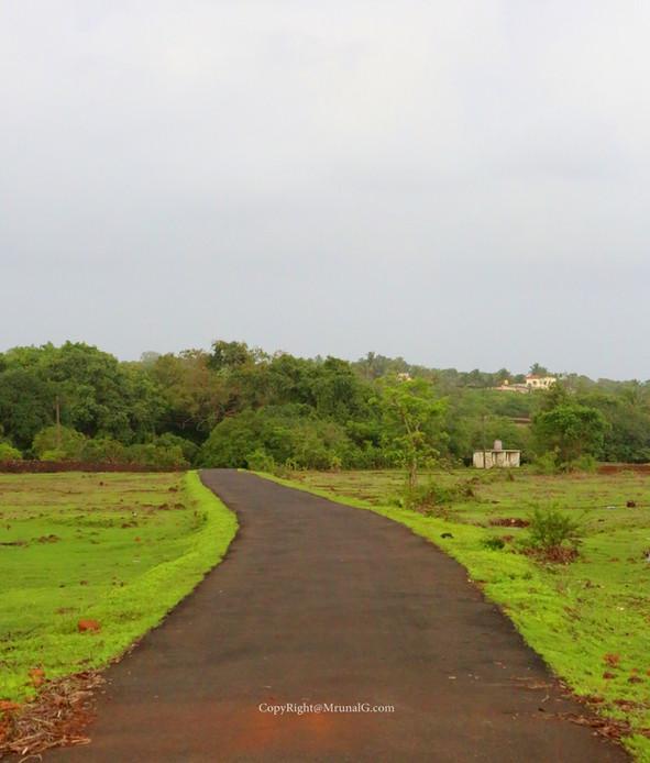 Road from Devgad Katta to Vadatar area from the back of Devgad katta.