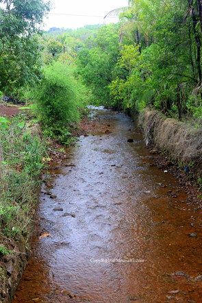 Stream during monsoon waters at Tembvli village