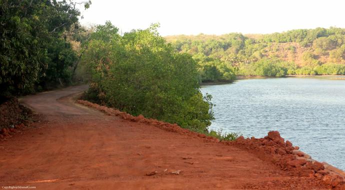 The road to Veerwadi next to Vadatar bridge
