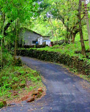 Devgad vadatar road from devgad Katta
