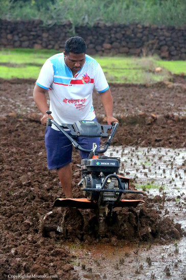 farmer adopting new technologies for plouging their fields giving away the bullocks and manual methods
