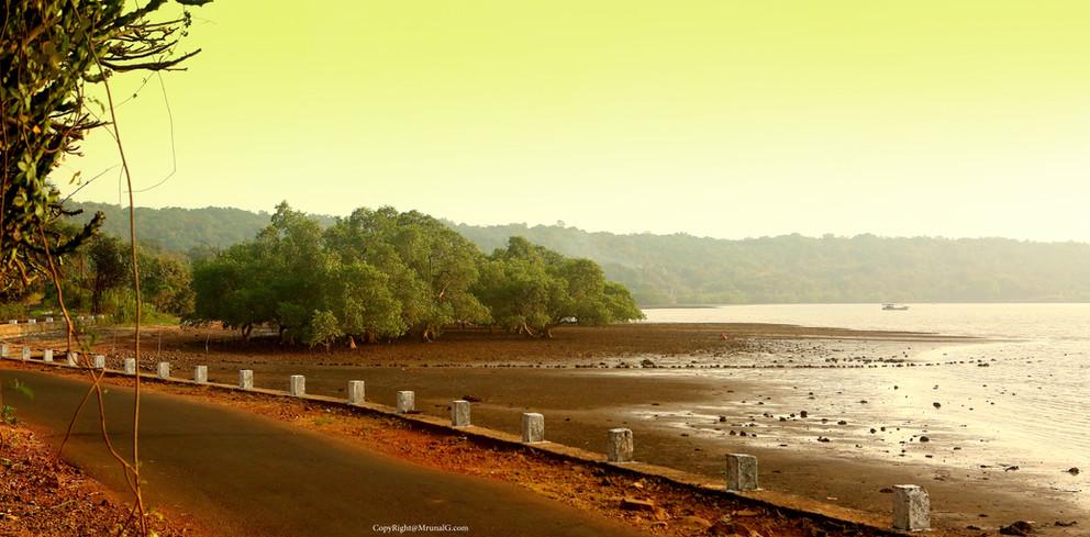 Beautiful evening on the road from Kavalewadi to Vadatar bridge