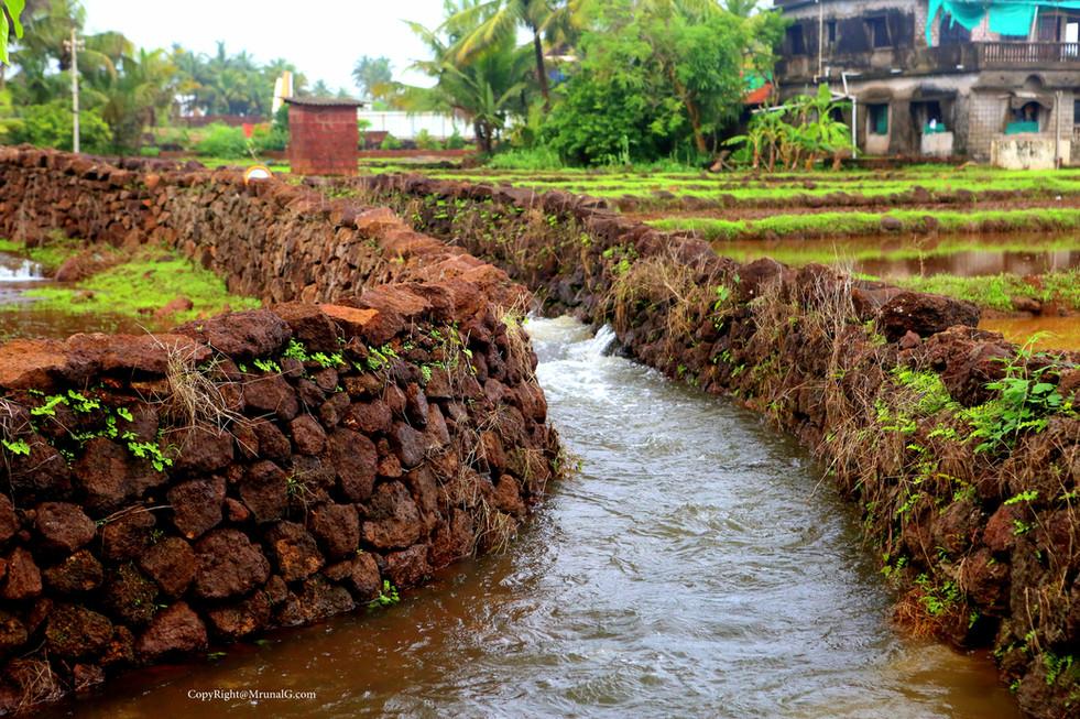 7.21 Water stream behind Sarita hospital