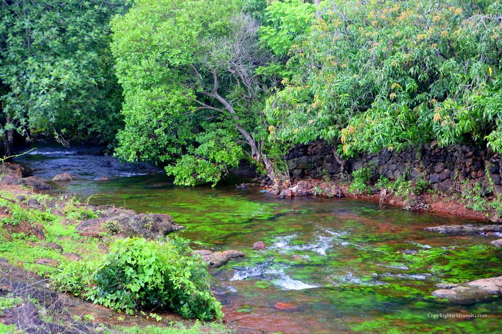 7.34 Devgad katta temple area stream during monsoon
