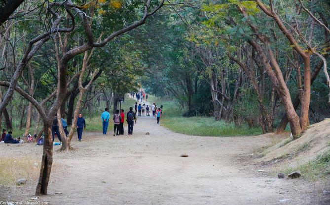 Walking path at the Taljai tekdi