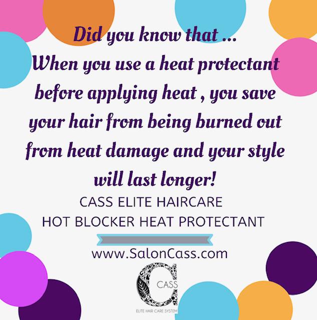 Salon Cass Cass Elite Hair Care HOT BLOC