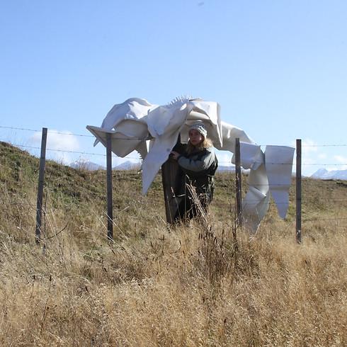 Pilar Quinteros: Patagonian Orchids: Letter to Chile (short film)