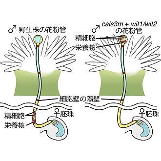 図3-2_.jpg