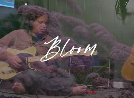 Possible Bird: Bloom (Music Video)