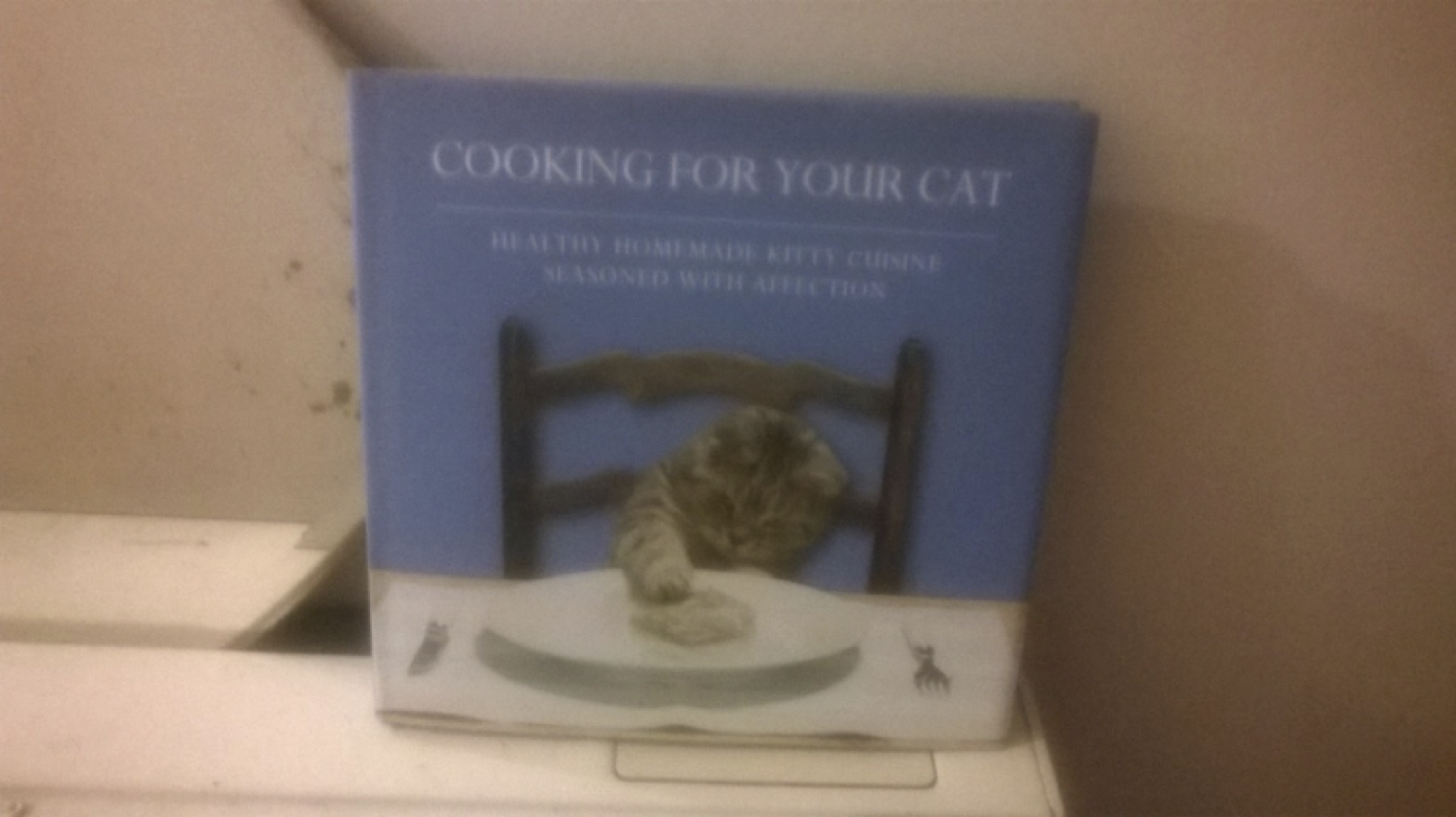 Cooking for cats from Seb Vaas