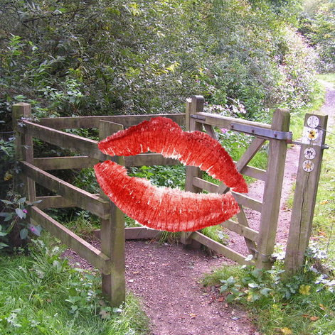 kissing_gate_haysden_country_park-_-_geograph-org-uk_-_189742.jpg
