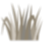 icon-herbs.png