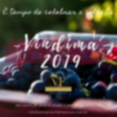 VINDIMA VF 2019.png