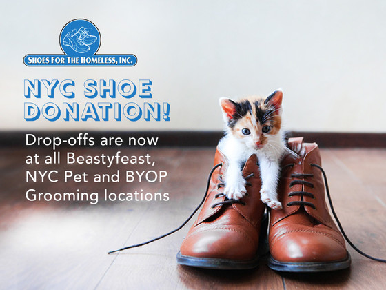 Animal Lovers Unite to Help the Homeless Receive Shoes in NYC!