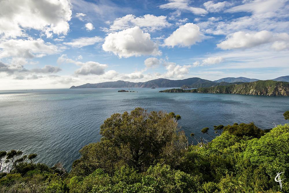 Motuara Island