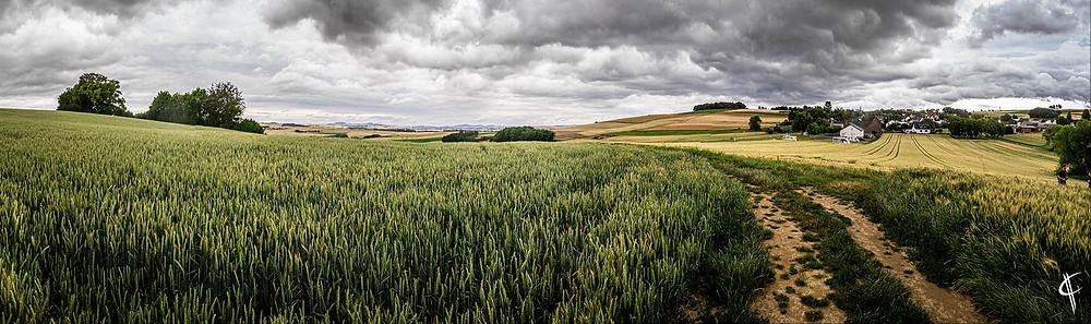 Panorama vor Wierschem