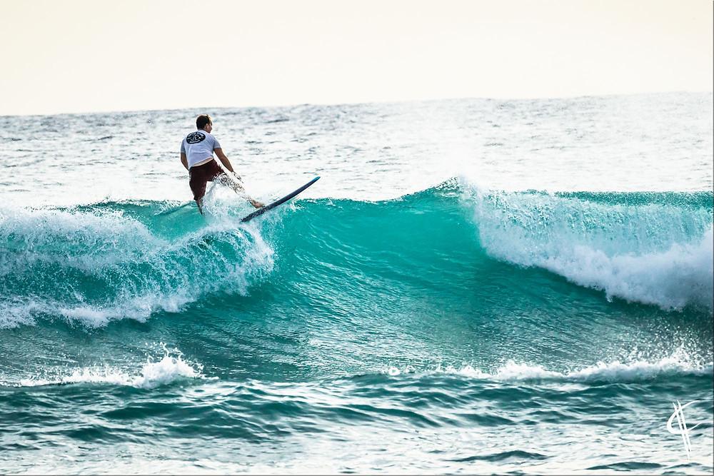 Waikiki Surfer