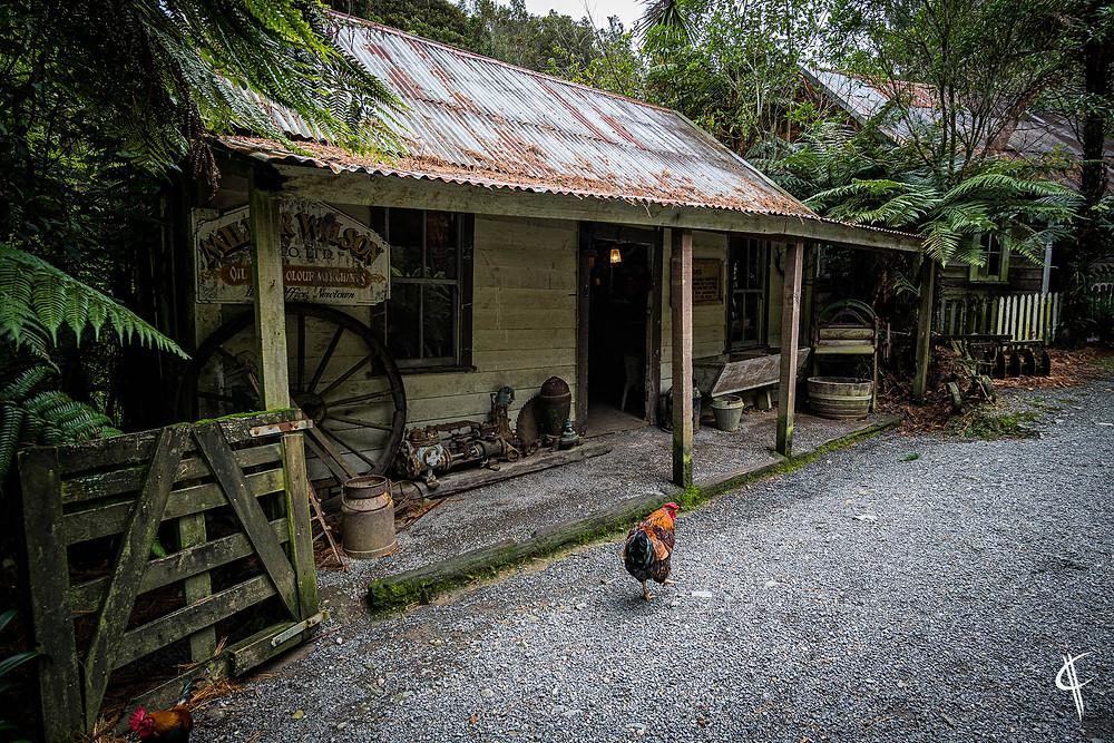 Old Village @ Staglands Wildlive Reserve